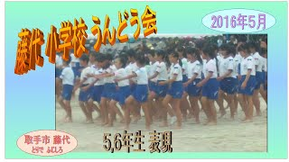 運動会2016・小5・6生・表現・Physical Education
