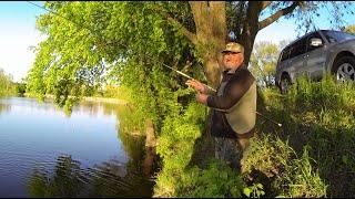 Літня риболовля поплавчанкой на карася від Михалича