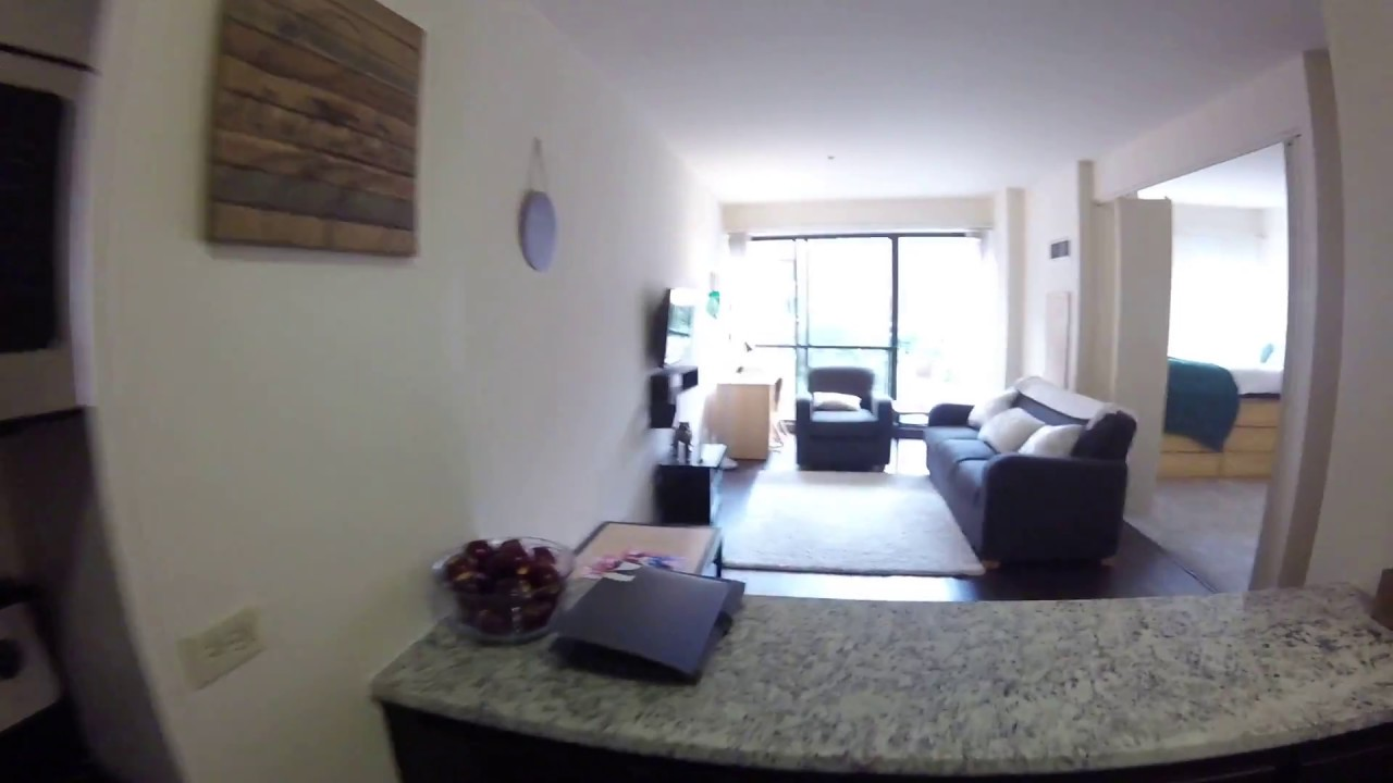 South Loop Chicago Apartments 777 S State Convertible Model Gopro Tour