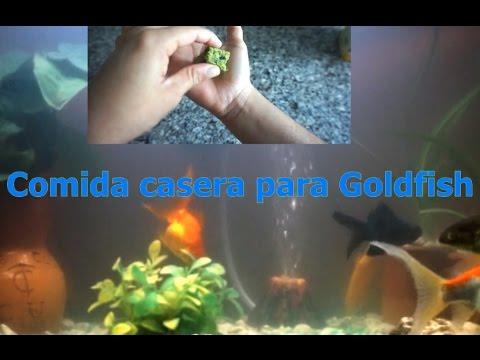 Comida casera para peces papilla de verduras doovi for Alimento para goldfish