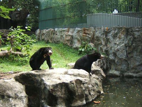 ★ ★ ★ สวนสัตว์ดุสิต - Dusit Zoo ★ ★ ★