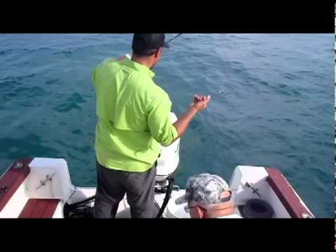 How To Catch Bait: Ballyhoo