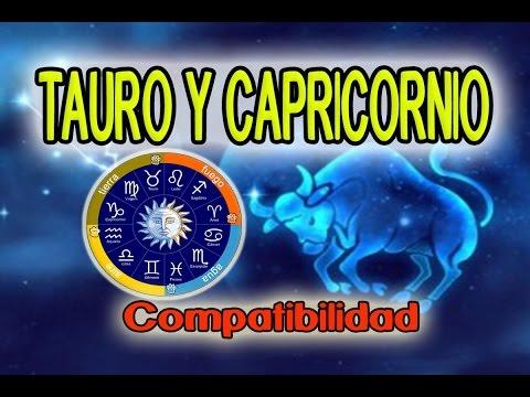 The Taurus Symbol: The Bull