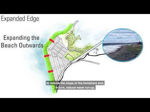 Coastal Flood Adaptation Strategy | City of Surrey