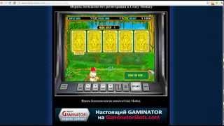 видео Краткий обзор интернет-клуба Вулкан