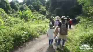 [Travel&Learn] Một ngày với Cúc Phương