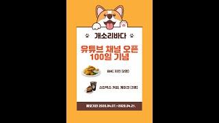 치킨과 스타벅스 기프티콘을 구독자들에게!