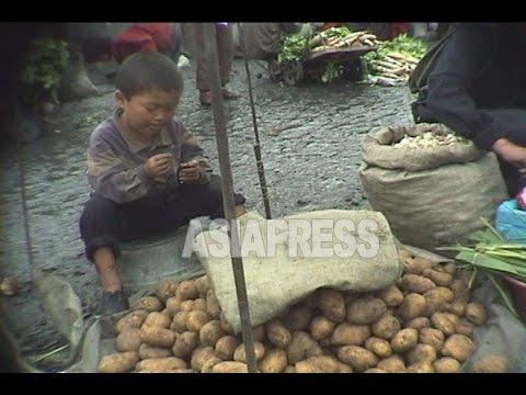 [North Korea Video Report] North Korean Kids on the Battle of Life