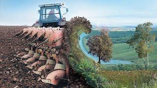 Черноземные почвы ЦЧР:  состояние и пути сохранения их плодородия
