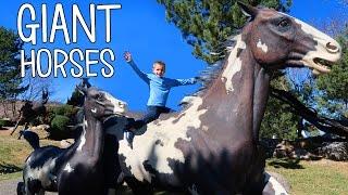 GIANT HORSES!!!