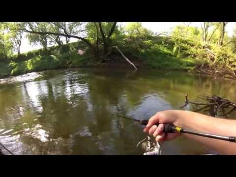 как поймать голавля на маленькой речке