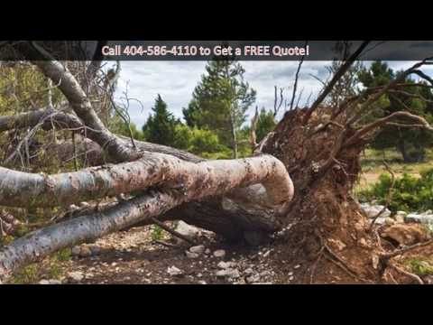 tree-removal-atlanta-|-tree-services-atlanta,-ga