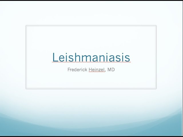Clinical Leishmaniasis - Fred Heinzel, MD