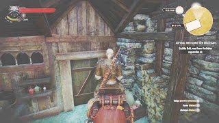Witcher 3 - Roach funny bug!