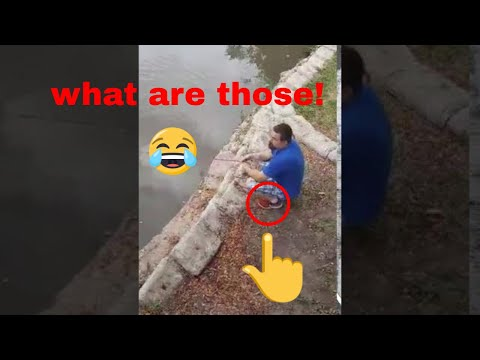 *WARNING* Magnet fishing in a park in my old home town