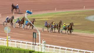 Vidéo de la course PMU PRIX DE L'ODEON