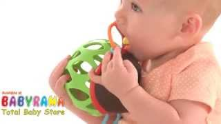 Skip Hop Explore & More Roll Around Toy