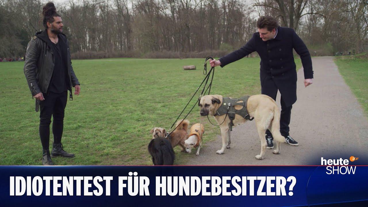 Haustierboom in der Coronakrise: Braucht es einen Hundeführerschein? | heute-show