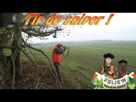 Hunting driven deer roe deer and wild boar, a sniper shot