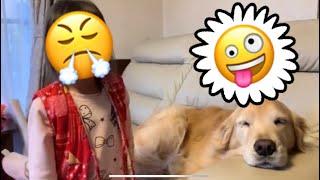 今回のビデオでは、ユズちゃんがソファーに座りたいみたい。一緒に座り...
