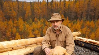 November Rain   Log Cabin Sauna Ep  7   Canadian Wilderness Off Grid Living