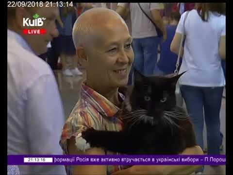 Телеканал Київ: 22.09.18 Столичні телевізійні новини 21.00