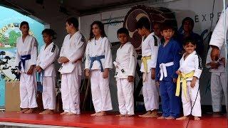 Judo Demonstration - Orlando Japan Festival 2018