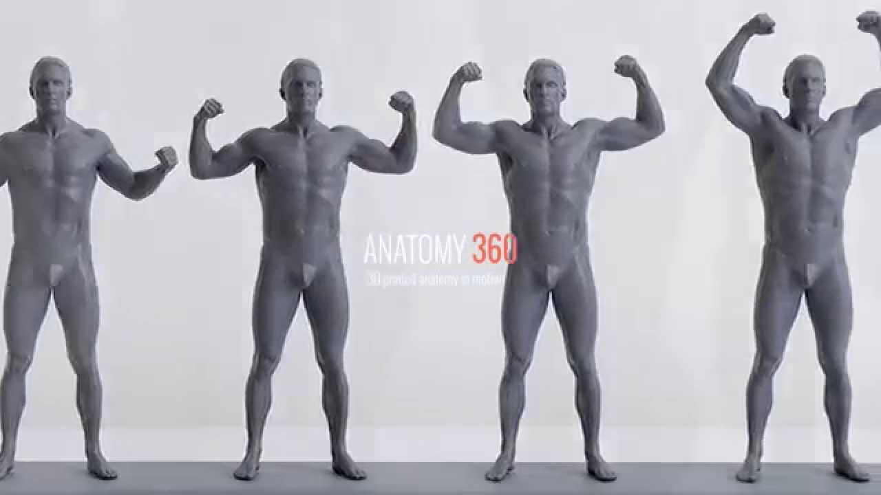 3D Printed Anatomy in Motion - YouTube