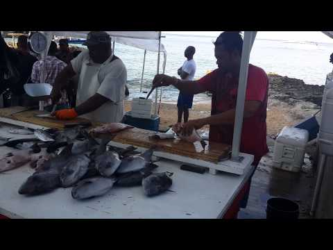 Fish market George Town Cayman Islands