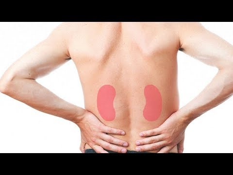 This Heals a Single Stroke, Kidneys, Pancreas, Liver … There is No Medication To Compare With This!