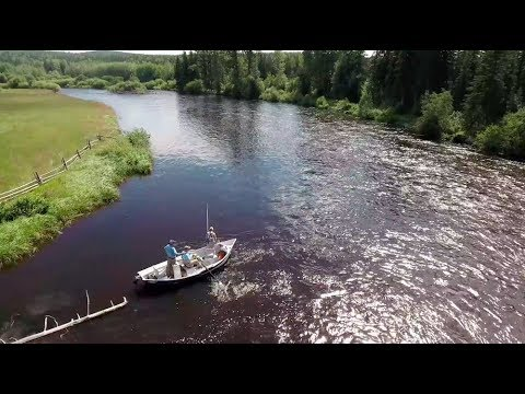 """""""The Balance"""" Season 2 - Episode 4 - Scientific Anglers Fly Fusion TV Web Series"""