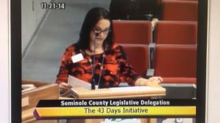 The 43 Days Initiative - Seminole County Delegation Meeting