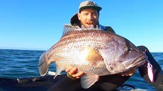 BIG FISH  from the Kayak
