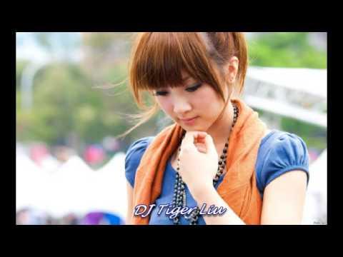 Nonstop Mandarin Chinese  Love Song CD 3 - Remix by DJ Tiger Liu