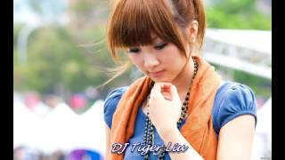 Video Nonstop Mandarin Chinese  Love Song CD 3 - Remix by DJ Tiger Liu download MP3, 3GP, MP4, WEBM, AVI, FLV September 2018