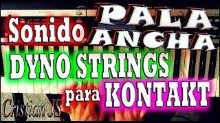 Sonido Pala Ancha para Kontakt - DYNO Strings - Cristian JS