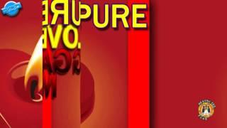 Video Restricted Zone   Pure Love Reggae Mix 'Da Musical Hierarchy' download MP3, 3GP, MP4, WEBM, AVI, FLV April 2018