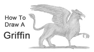 How to Draw a Griffin (Gryphon)