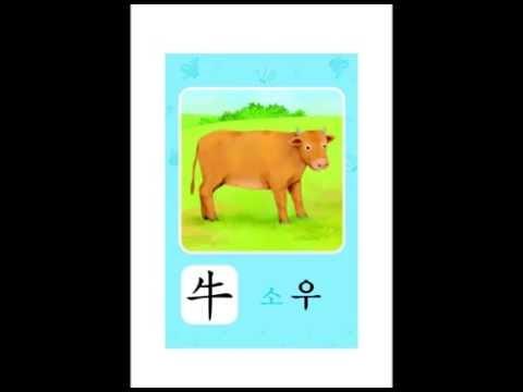 ♥ 구몬 한자 이미지 연상 카드 3A-1 ♥