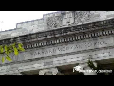 My Journey Studying Medicine in Harvard University