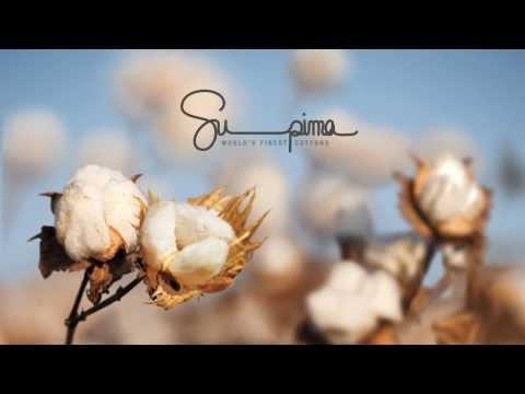 The Supima Story