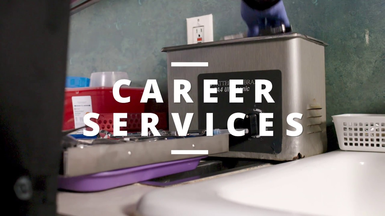 How To Get The Job Career Services Las Vegas Dental Assistant