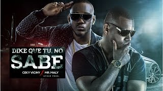 Ceky Viciny Ft Mr. Maly - Dike Que Tu No Sabe ( Dembow Dominicano 2017)