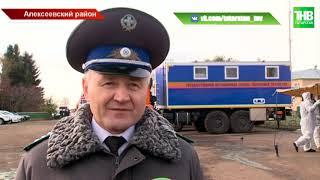 Вспышку сразу нескольких особо опасных заболеваний животных остановили в Татарстане