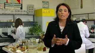 Laurea triennale in Biologia ed Ecologia Marina - L 13