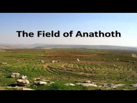 THE FIELD OF ANATHOTH AND THE LOST ARK OF THE COVENANT