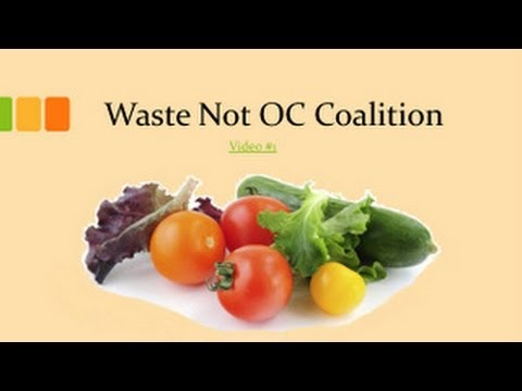 Waste Not OC: Recovering Surplus Food for the Hungry