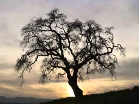 Rudolf Steiner - Overcoming Nervousness