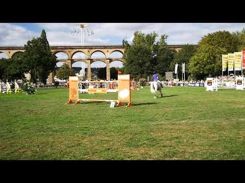 Bietigheimer Pferdemarkt 2018