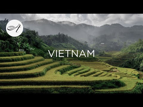 introduce vietnam to the world Da nang sisters introduce vietnamese cuisine to the world in germany but every year she spends all of her holiday in vietnam to film vietnamese food.